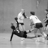 D-Jugend: Landesmeisterschaft 2016/2017 + Wismar Cup