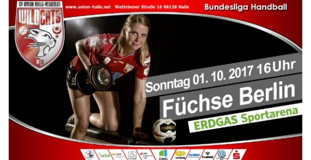 WM-Spieltag bei den Wildcats – Spreefüchse Berlin zu Gast in der ERDGAS Sportarena