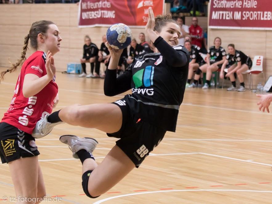 Liga-Dino trifft auf Liga-Neuling – Halle bekommt neuen Einwohner